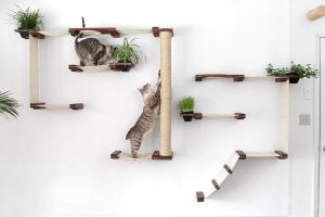 Hand-crafted beautiful, large, and sleek design Perfect play structure to bring out the acrobat in your cat Gives cats an outlet for their climbing needs Fabric can be easily removed for washing Add a touch of the wild by adding cat friendly plants